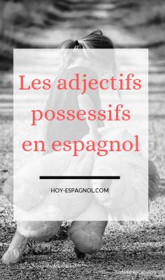 adjectifs-possessifs-espagnol