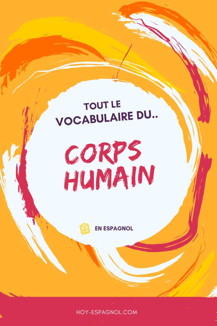 vocabulaire-corps-humain-espagnol