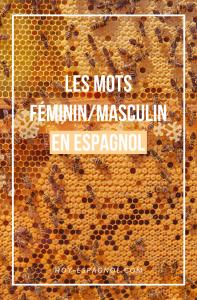 Le genre : masculin ou féminin en espagnol