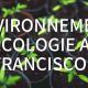 environnement écologie francisco